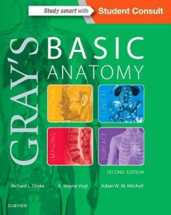 Gray's basic anatomy /  Richard L. Drake, PhD, FAA, Director of Anatomy, Professor of Surgery, Cleveland Clinic Lerner College of Medicine, Case Western Reserve University, Cleveland, Ohio, A. Wayne Vogl, PhD, FAA, Professor of Anatomy and Cell Biology,   Department of Cellular and Physiological Sciences, Faculty of Medicine, University of British Columbia, Vancouver, British Columbia, Adam W.M. Mitchell, MBBS, FRCS, FRCR,  Consultant Radiologist, Chelsea and Westminister Hospital,  Honorary Senior Lecturer Imperial College, London, UK ; illustrations by Richard Tibbitts and Paul Richardson ; photographs by Ansell Horn. - Richard L. Drake, PhD, FAA, Director of Anatomy, Professor of Surgery, Cleveland Clinic Lerner College of Medicine, Case Western Reserve University, Cleveland, Ohio, A. Wayne Vogl, PhD, FAA, Professor of Anatomy and Cell Biology,   Department of Cellular and Physiological Sciences, Faculty of Medicine, University of British Columbia, Vancouver, British Columbia, Adam W.M. Mitchell, MBBS, FRCS, FRCR,  Consultant Radiologist, Chelsea and Westminister Hospital,  Honorary Senior Lecturer Imperial College, London, UK ; illustrations by Richard Tibbitts and Paul Richardson ; photographs by Ansell Horn.