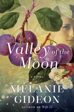 Valley of the moon : a novel / Melanie Gideon.