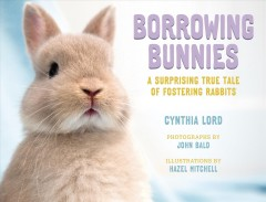 Borrowing bunnies : a surprising true tale of fostering rabbits / Cynthia Lord ; photographs by John Bald ; illustrations by Hazel Mitchell.