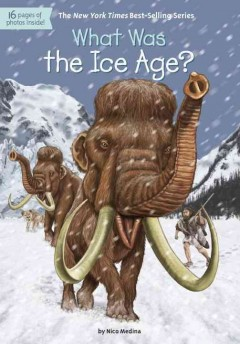 What was the Ice Age? /  by Nico Medina ; illustrated by David Groff.