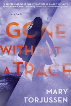 Gone without a trace /  Mary Torjussen.