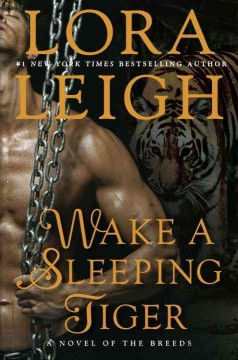 Wake a sleeping tiger /  Lora Leigh.