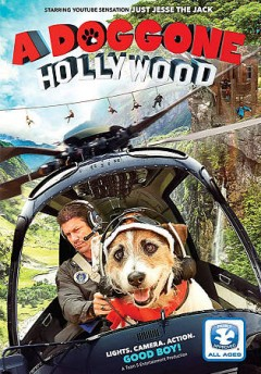 A doggone Hollywood /  director, Jim Wynorski.