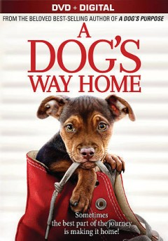 A dog's way home /  Columbia Pictures presents ; produced by Gavin Polone ; screenplay by W. Bruce Cameron & Cathryn Michon ; directed by Charles Martin Smith.