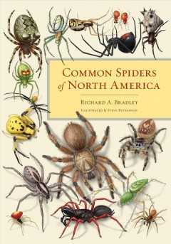 Common spiders of North America /  Richard A. Bradley ; illustrations by Steve Buchanon ; sponsored by the American Arachnological Society. - Richard A. Bradley ; illustrations by Steve Buchanon ; sponsored by the American Arachnological Society.