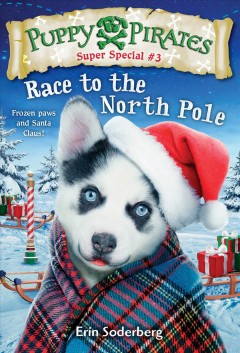Race to the North Pole /  by Erin Soderberg ; illustrated by Russ Cox. - by Erin Soderberg ; illustrated by Russ Cox.