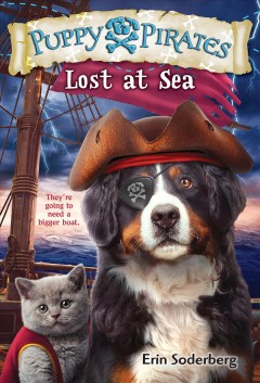 Lost at sea /  by Erin Soderberg ; illustrations by Russ Cox.