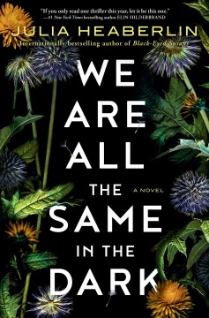 We are all the same in the dark : a novel / Julia Heaberlin.