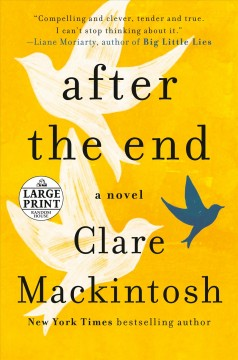 After the end /  Clare Mackintosh.