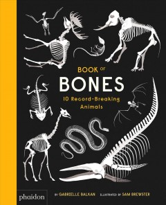 Book of bones : 10 record-breaking animals / by Gabrielle Balkan ; illustrated by Sam Brewster.