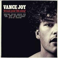Dream your life away /  Vance Joy. - Vance Joy.