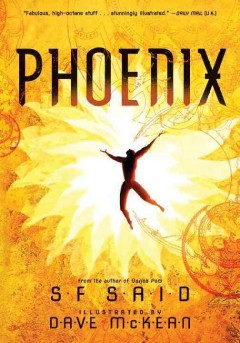 Phoenix /  SF Said ; illustrated by Dave McKean.