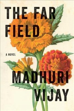The far field : a novel / Madhuri Vijay.