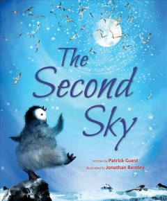 The second sky /  written by Patrick Guest ; illustrated by Jonathan Bentley.