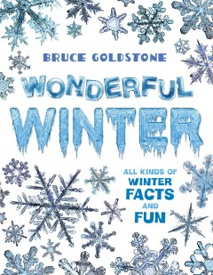 Wonderful winter / All Kinds of Winter Facts and Fun Bruce Goldstone. - Bruce Goldstone.