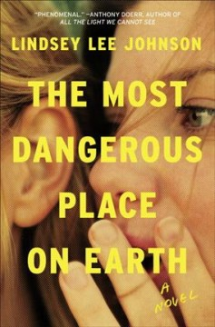 The most dangerous place on earth : a novel / Lindsey Lee Johnson.