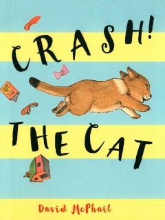 Crash! the cat /  David McPhail. - David McPhail.
