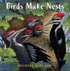 Birds make nests /  Michael Garland.