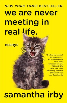 We are never meeting in real life : essays / Samantha Irby.