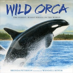 Wild orca : the oldest, wisest whale in the world / Brenda Peterson ; paintings by Wendell Minor.