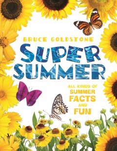 Super summer /  Bruce Goldstone.