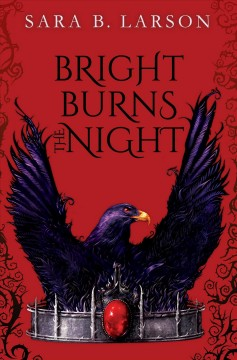 Bright burns the night /  Sara B. Larson. - Sara B. Larson.
