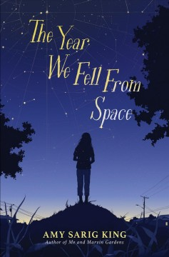 The year we fell from space /  Amy Sarig King. - Amy Sarig King.
