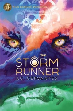 The storm runner /  by J.C. Cervantes.