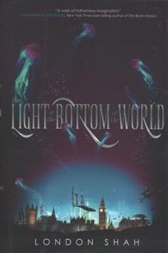 The light at the bottom of the world /  London Shah. - London Shah.
