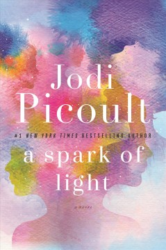 A spark of light /  Jodi Picoult.