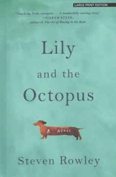 Lily and the octopus /  Steven Rowley.