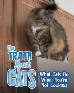 The truth about cats : what cats do when you're not looking / Mary Colson. - Mary Colson.