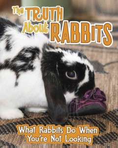 The truth about rabbits : what rabbits do when you're not looking / Mary Colson. - Mary Colson.