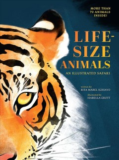 Life-size animals : an illustrated safari / written by Rita Mabel Schiavo ; illustrated by Isabella Grott.
