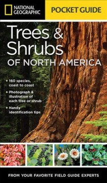 National Geographic pocket guide to trees & shrubs of North America /  Bland Crowder.