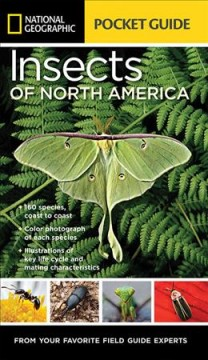 National Geographic pocket guide to the insects of North America /  Arthur V. Evans.