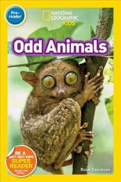 Odd animals /  Rose Davidson.
