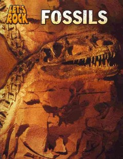 Fossils /  Richard and Louise Spilsbury.