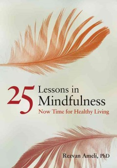 25 Lessons in Mindfulness : Now Time for Healthy Living / Rezvan Ameli.