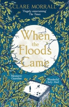 When the floods came /  Clare Morrall.
