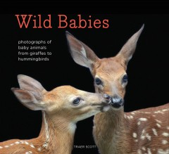 Wild babies : photographs of baby animals from giraffes to hummingbirds / by Traer Scott.