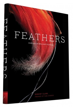 Feathers : displays of brilliant plumage / Robert Clark ; preface by Carl Zimmer.