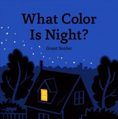 What color is night? /  Grant Snider. - Grant Snider.