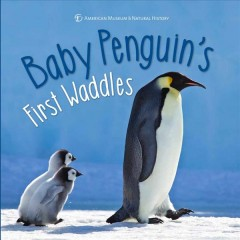 Baby penguin's first waddles /  text written by Ben Richmond ; contributor, Paul Sweet. - text written by Ben Richmond ; contributor, Paul Sweet.