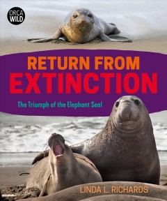 Return from extinction : the triumph of the elephant seal / Linda L. Richards.