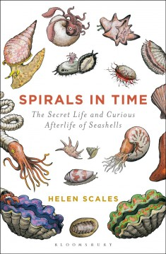 Spirals in time : the secret life and curious afterlife of seashells / Helen Scales.