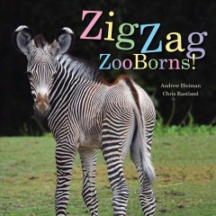 Zigzag zooborns! : zoo baby colors and patterns / Andrew Bleiman and Chris Eastland. - Andrew Bleiman and Chris Eastland.