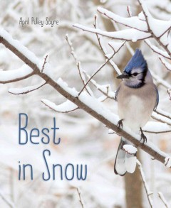 Best in snow /  April Pulley Sayre.