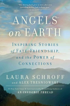 Angels on Earth : inspiring stories of fate, friendship, and the power of connections / Laura Schroff, and Alex Tresniowski.