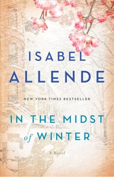 In the midst of winter : a novel / Isabel Allende ; translated from the Spanish by Nick Castor and Amanda Hopkinson.